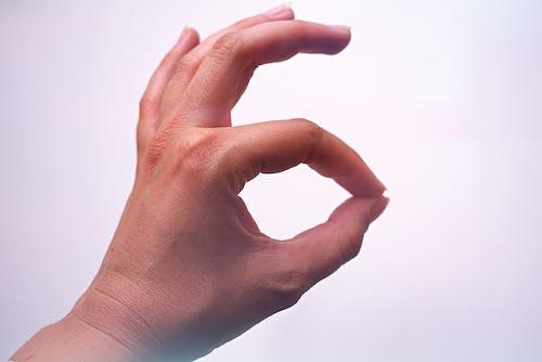 Foto d'estoc gratuïta de dits, gest, gest amb les mans, mà
