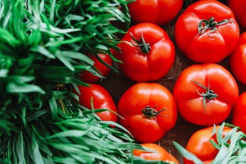 Darmowe zdjęcie z galerii z jedzenie, owoc, pomidory, pyszny
