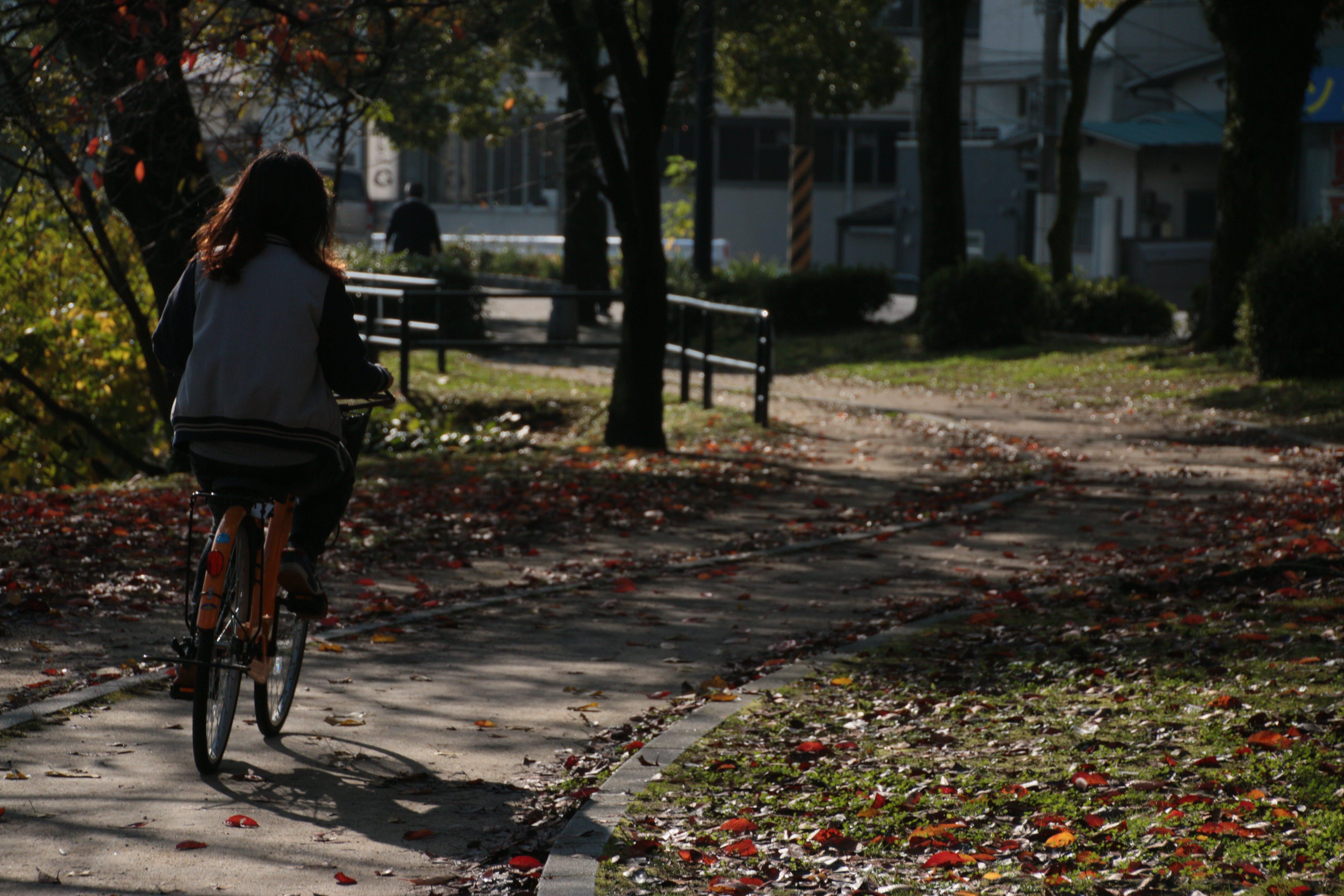 Free stock photo of bike, park, riding, woman