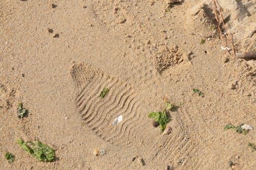 Free stock photo of beach, footprint, sand