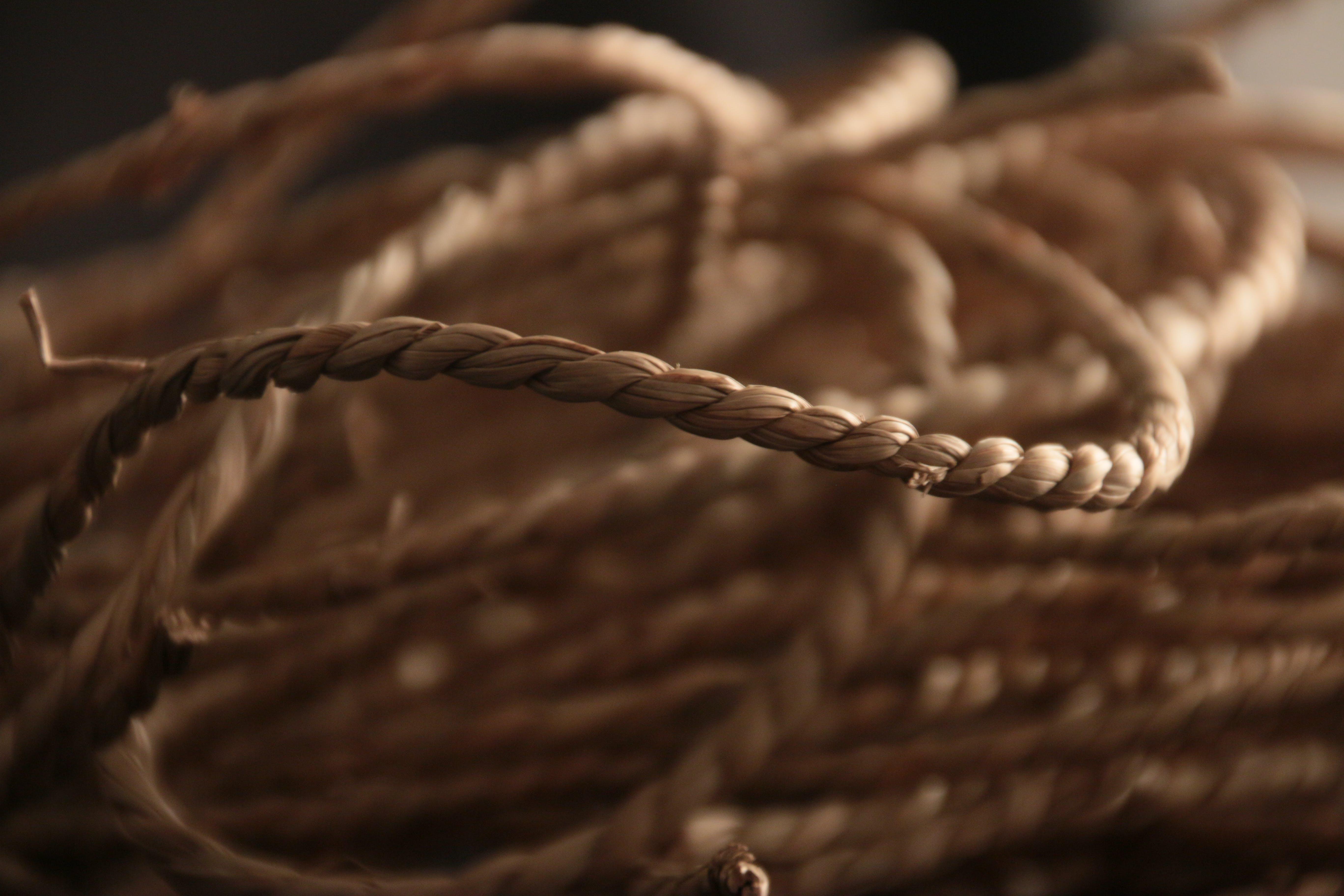 blur, close-up, cord