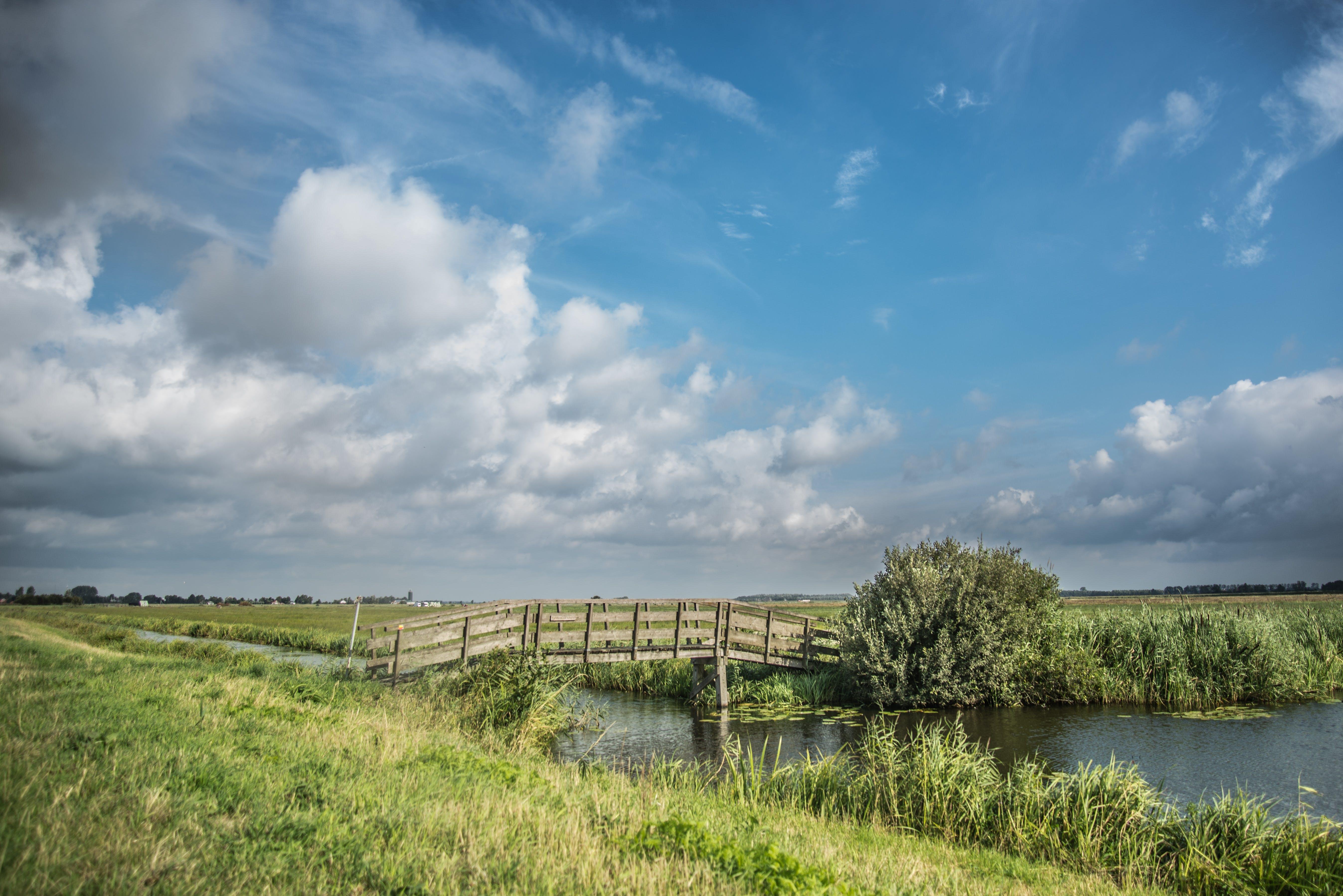 Gratis arkivbilde med åker, bro, dagslys, dyrket jord