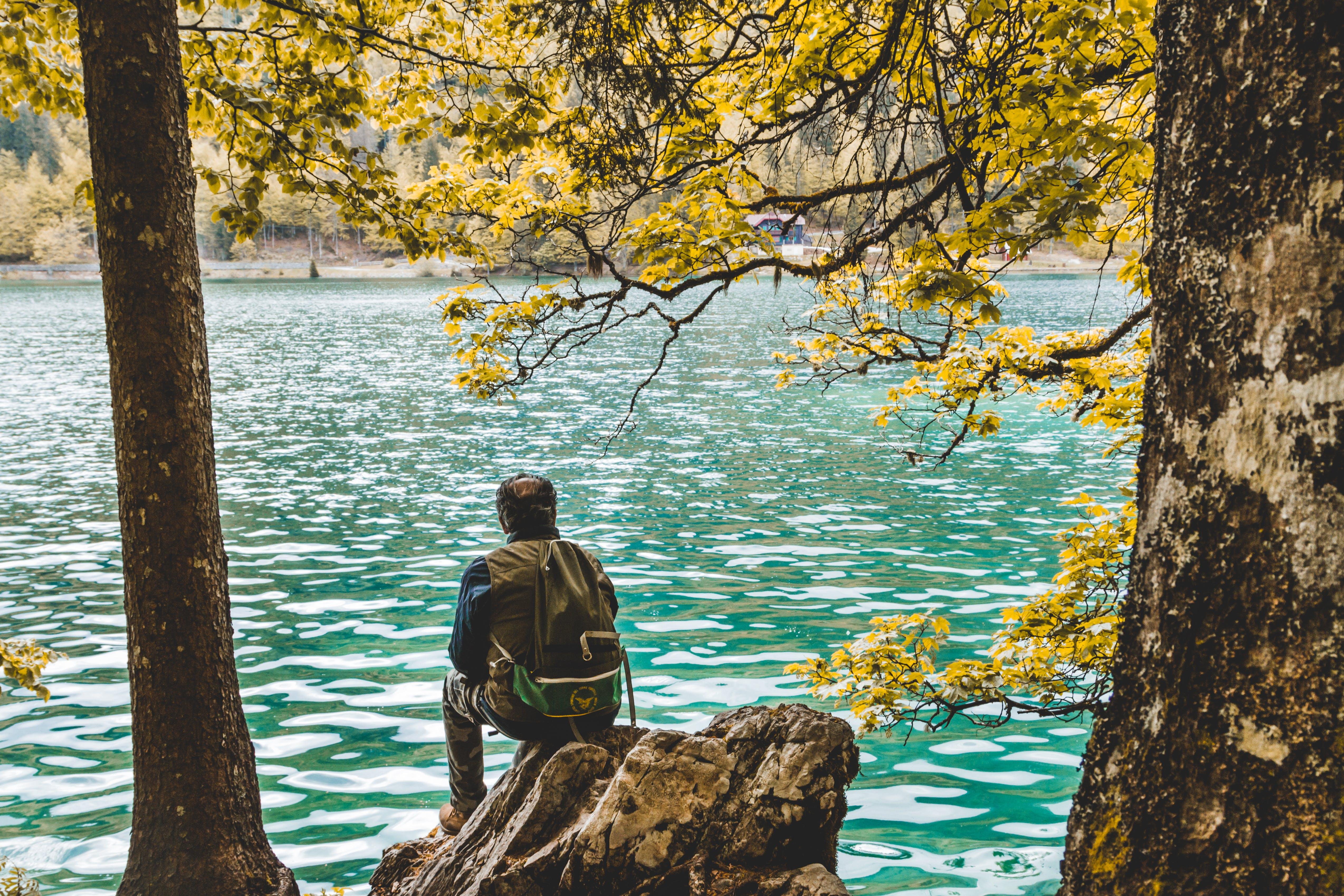 Photo of Man Sitting on Rock Near Lake