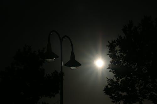Free stock photo of light, street lamps