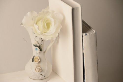 Free stock photo of flower, shelf, vase, white