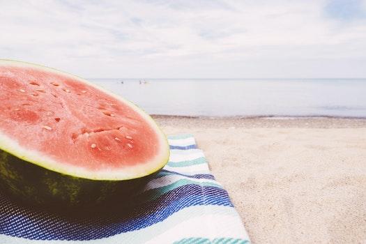 Free stock photo of food, sea, beach, sand
