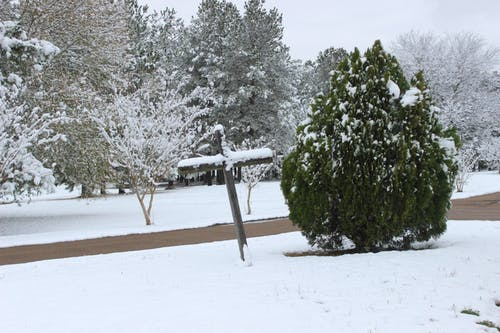 Free stock photo of Cross snow