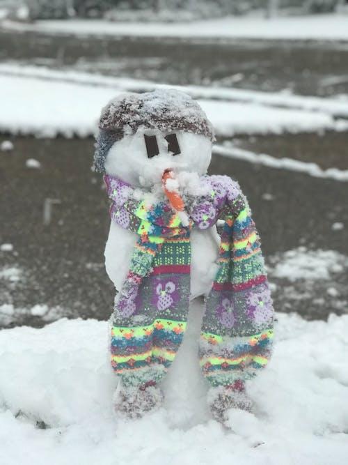 Free stock photo of snowman