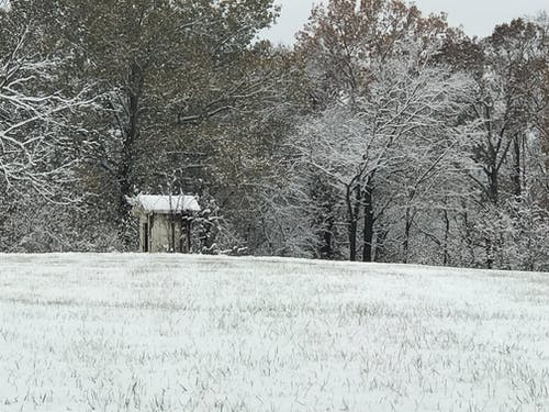 Free stock photo of shed, snow