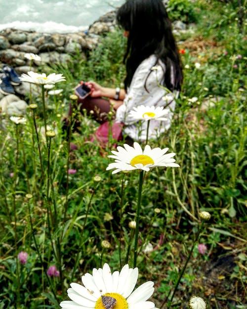 Ingyenes stockfotó lány, szépség, természet, virágok témában