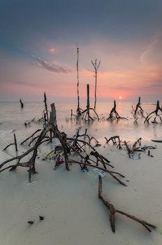 Kostenloses Stock Foto zu landschaft, sonnenuntergang, strand, liebe