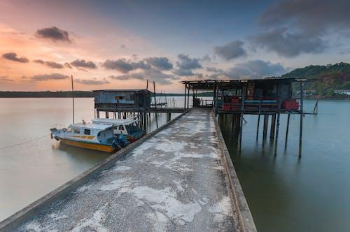balıkçı, doğa, hobi, İskele içeren Ücretsiz stok fotoğraf