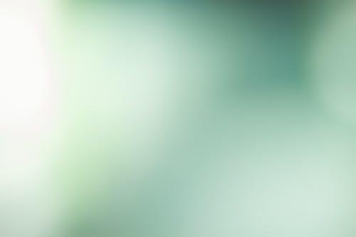 Imagine de stoc gratuită din curat, fundal, încețoșat, verde