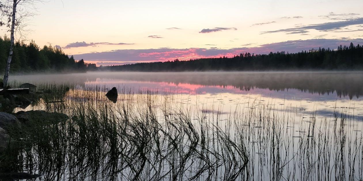 alba, estate, Finlandia