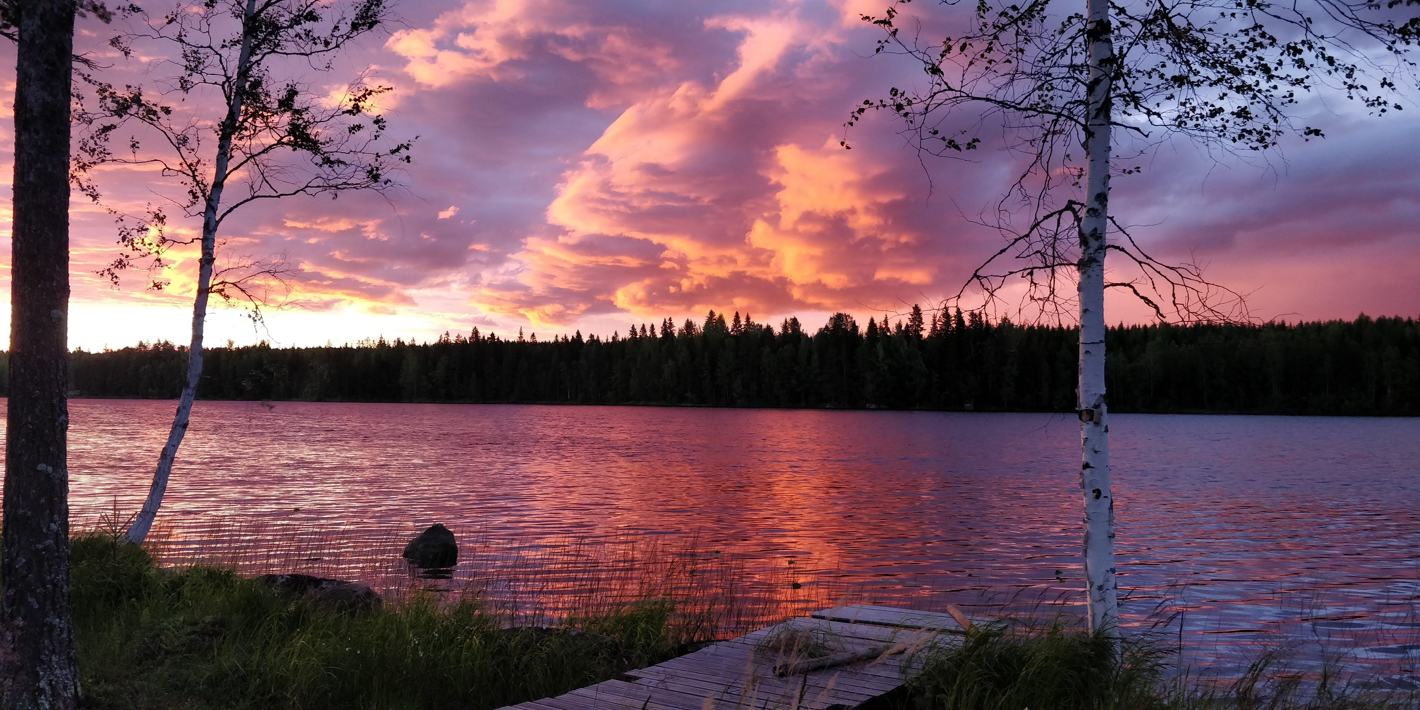 Gratis lagerfoto af aftensol, Finland, skov, solopgang