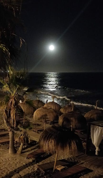 fuldmåne, måne, måne landing