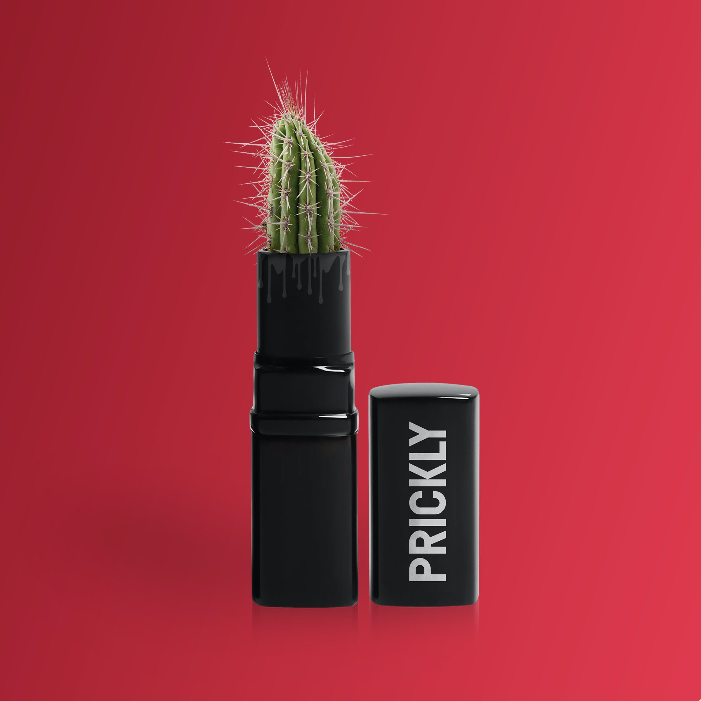 Green Prickly Lipstick With Cactus Plant