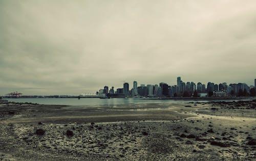 City Skyline and Ocean