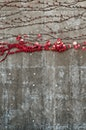 nature, red, wall