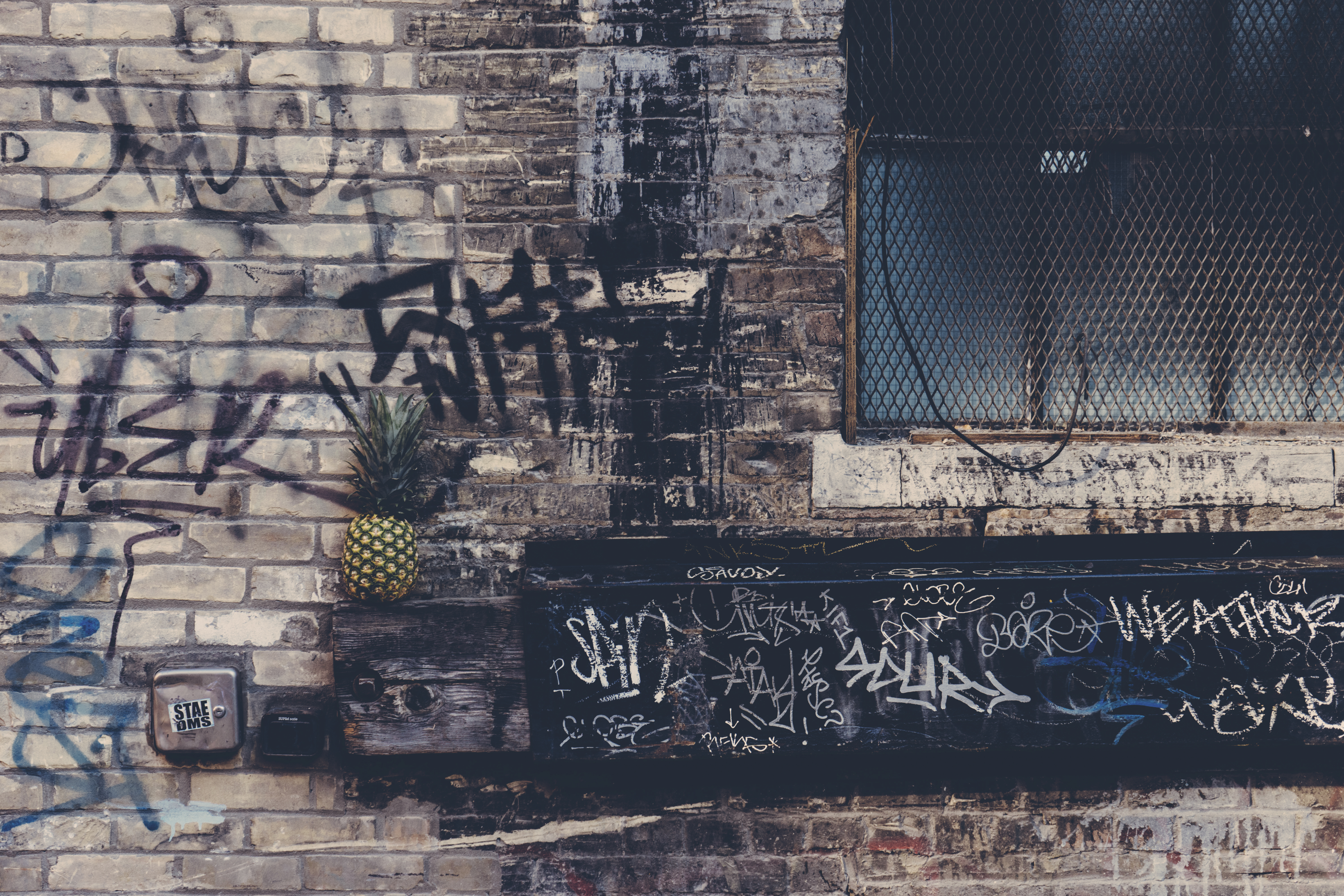 Free stock photo of city, graffiti, dirty, building