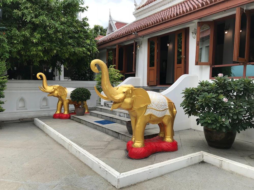 Darmowe zdjęcie z galerii z bangkok, siam, spokojny