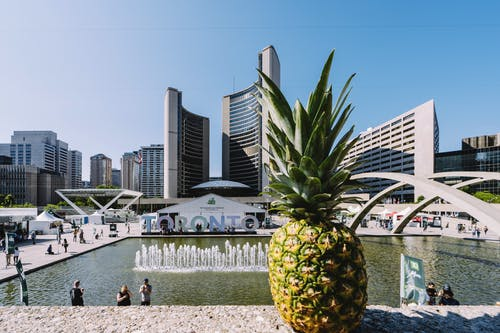 Безкоштовне стокове фото на тему «ананас, архітектура, будівлі, високий»