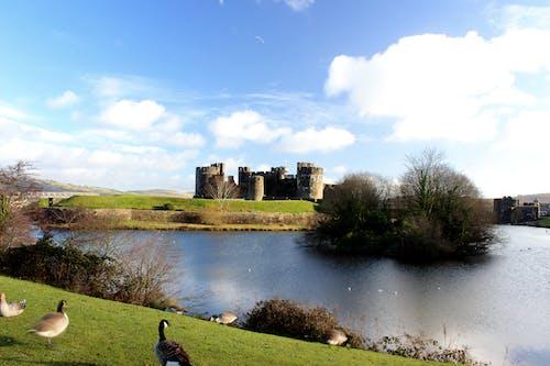 Immagine gratuita di castello, Galles, UK