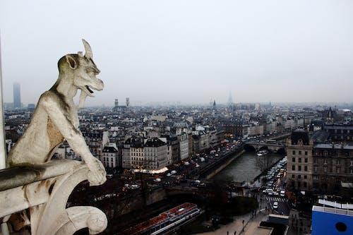 Immagine gratuita di doccioni, parigi