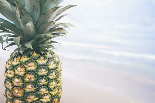 Yellow and Green Pineapple Fruit Near Sea