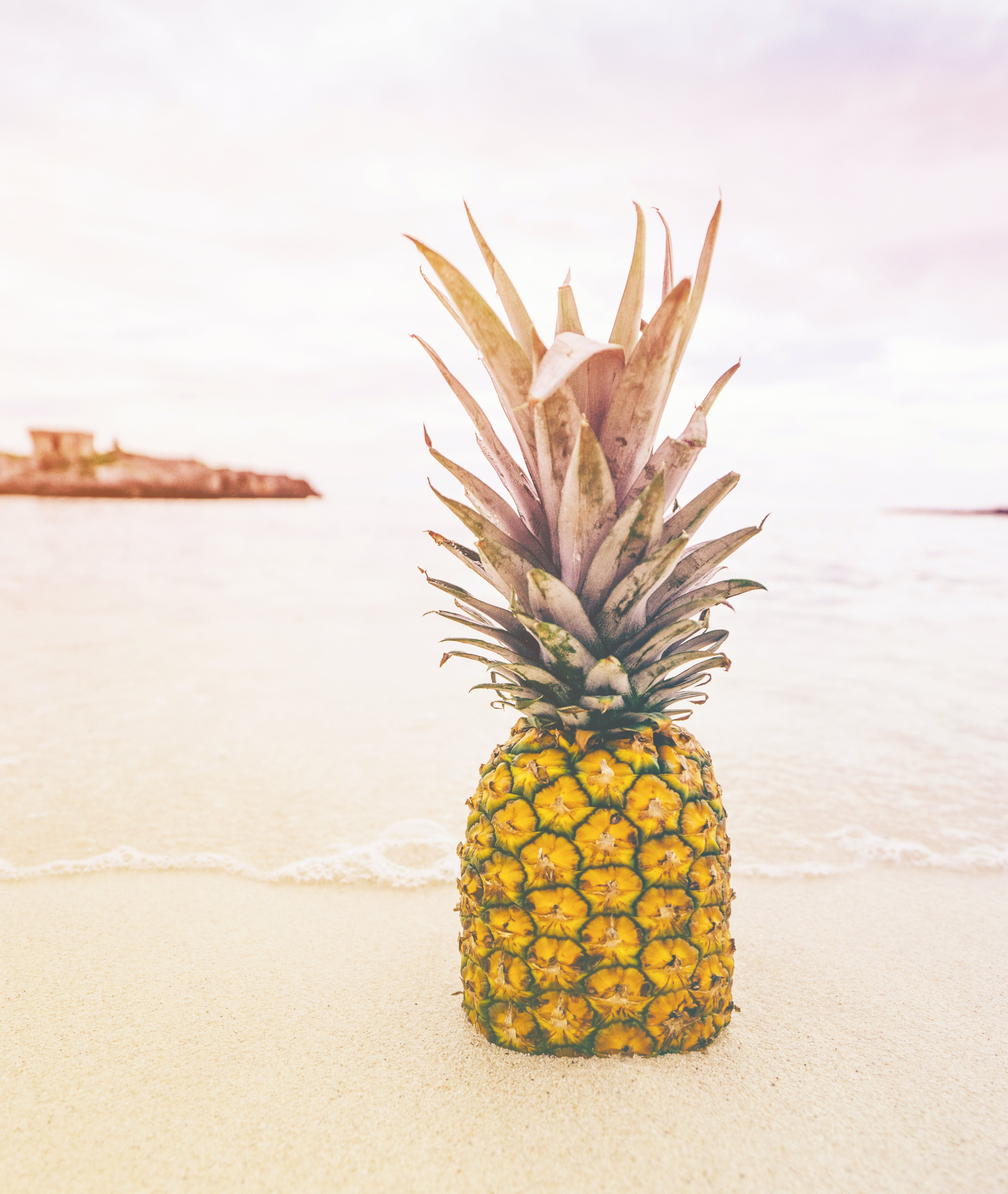 Pineapple at Beach Sand