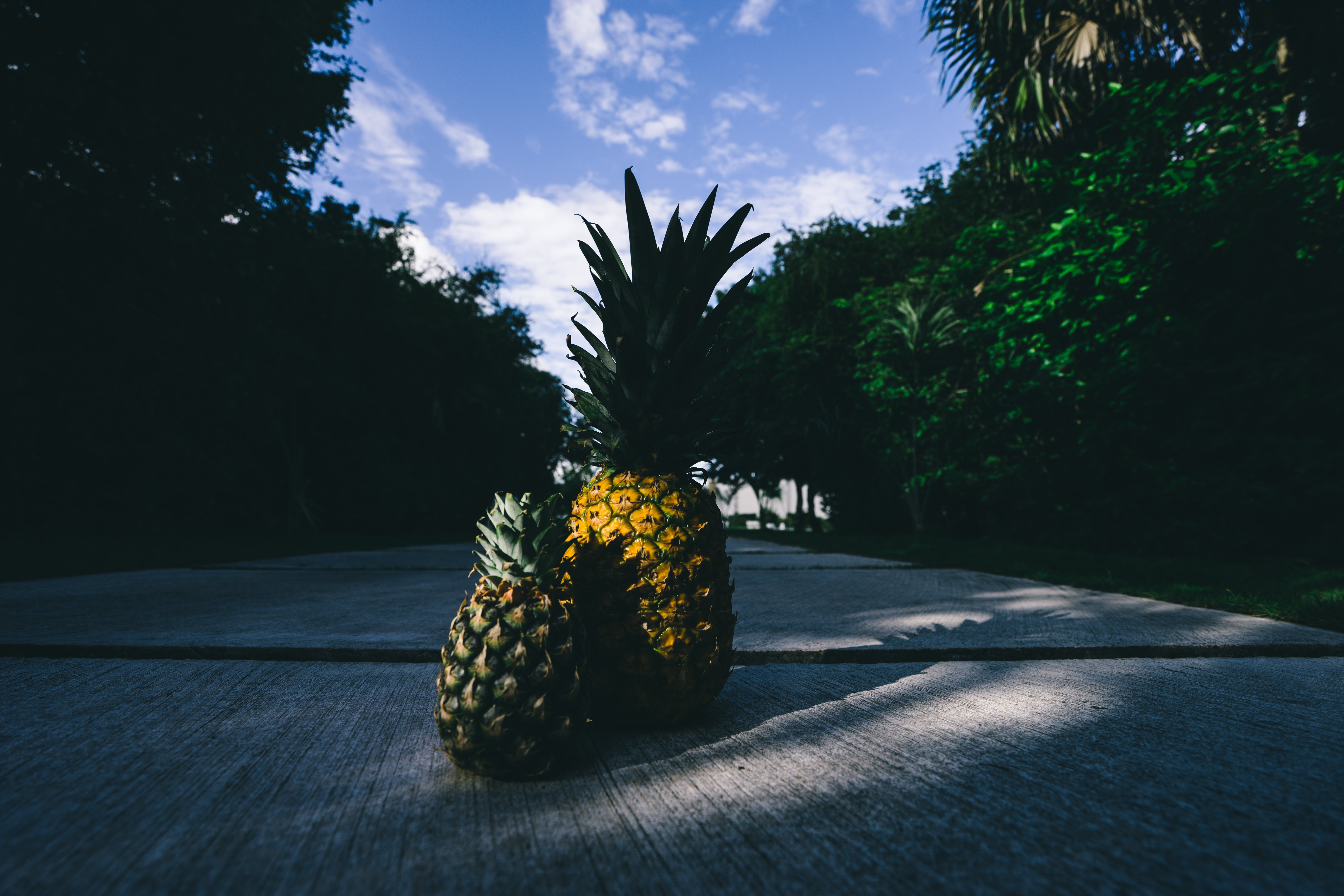Two Pineapples on Gray Surface Outdoors