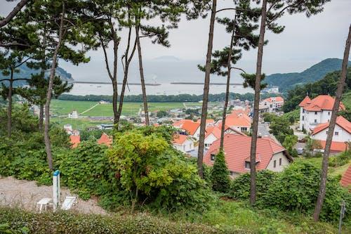 Fotos de stock gratuitas de alemán, Corea, Corea del Sur, pueblo alemán
