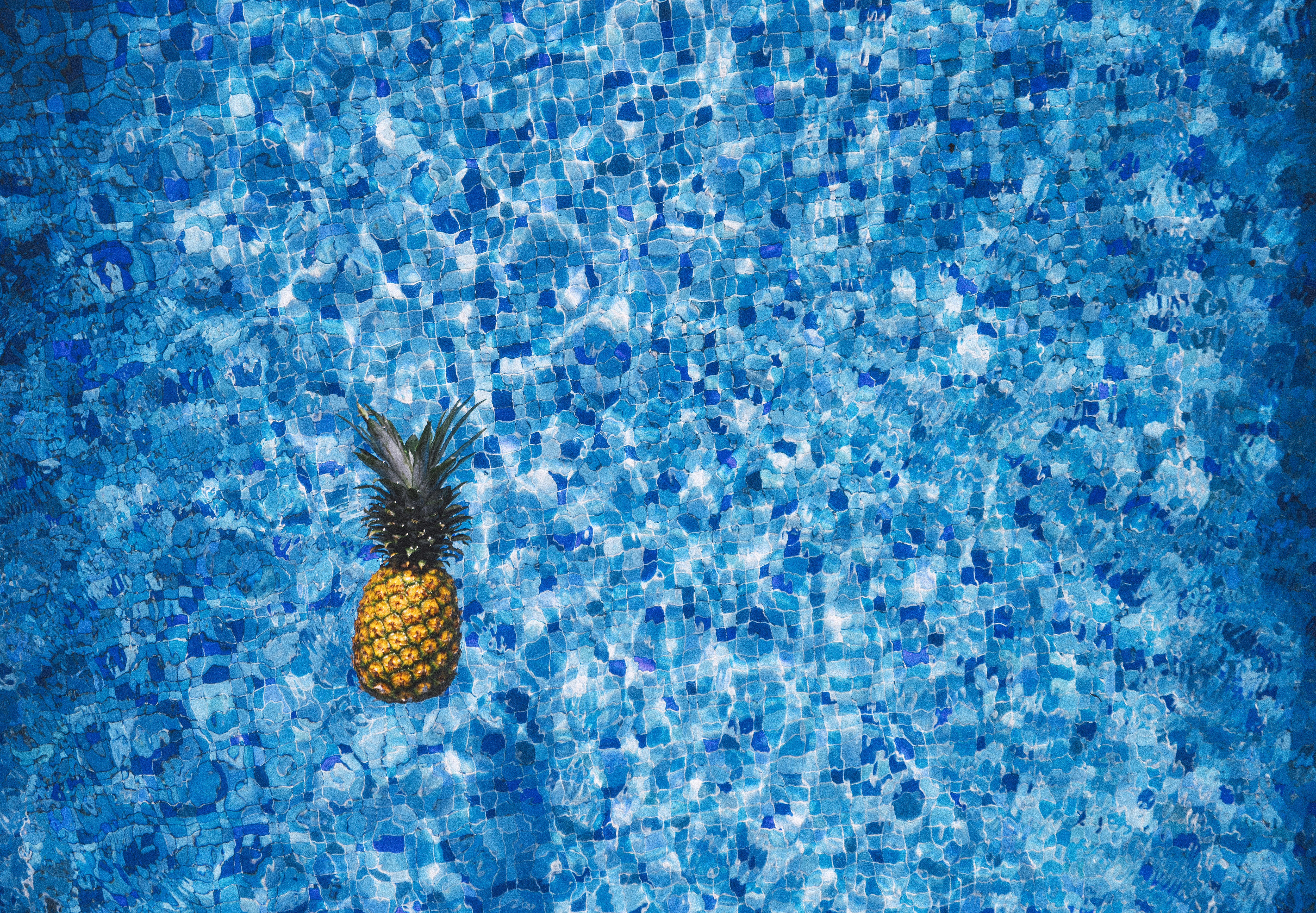 pool maintenance clarity pineapple