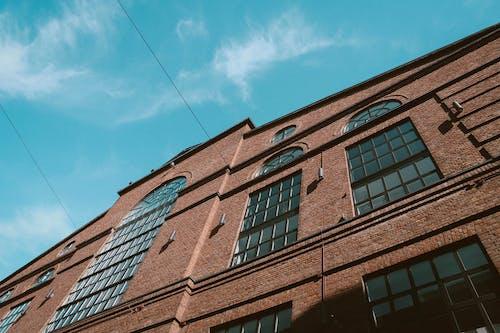 ガラス窓, レンガ, ローアングル写真, 前面の無料の写真素材