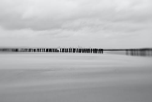 Základová fotografie zdarma na téma černobílá, lensbaby, moře, pláž