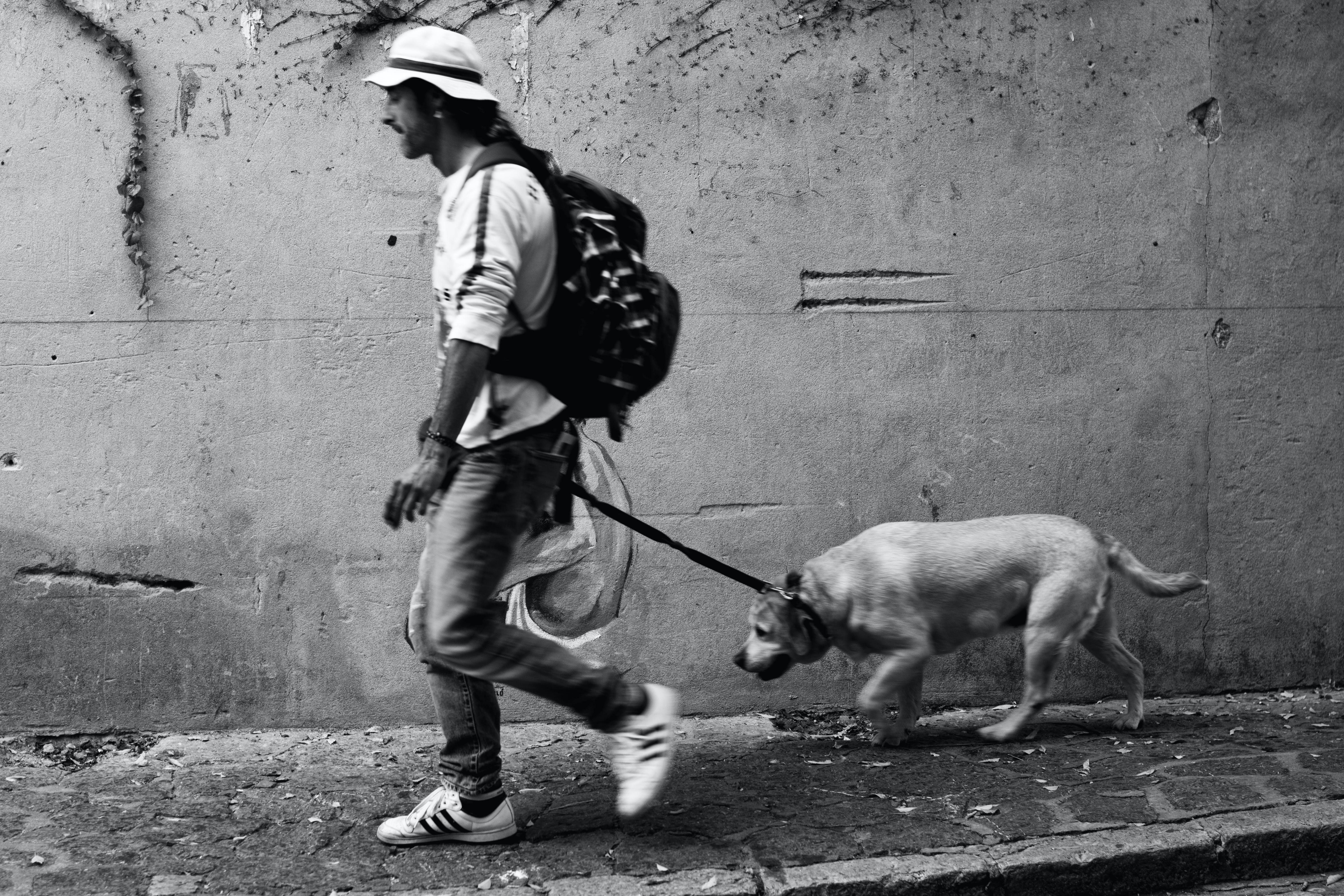 Grayscale Photography Of Man Walking With Dog