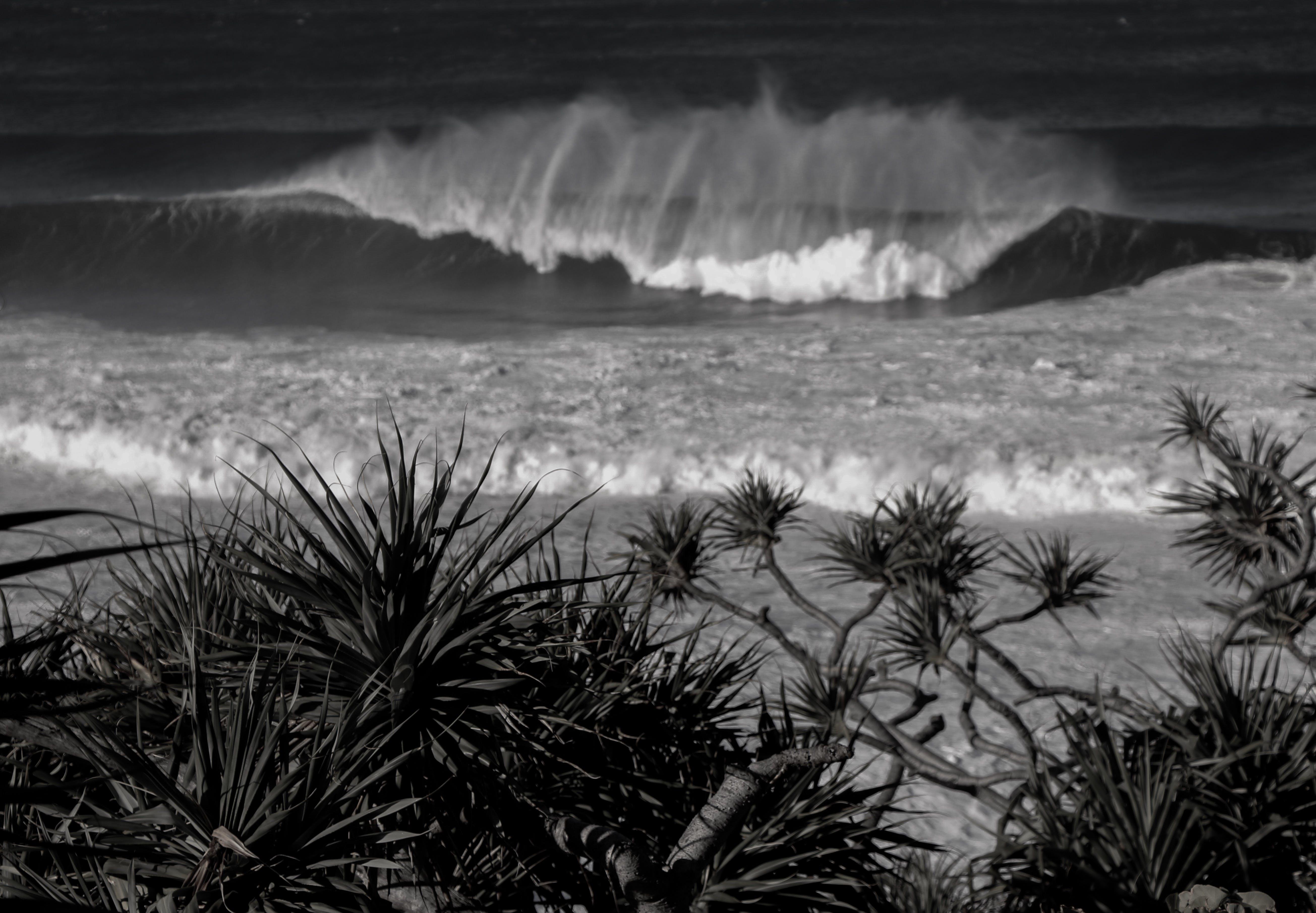 Free stock photo of paradise, salt water, sea, sea water