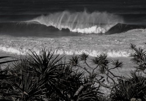 Foto d'estoc gratuïta de , aigua de mar, aigua salada, fent surf