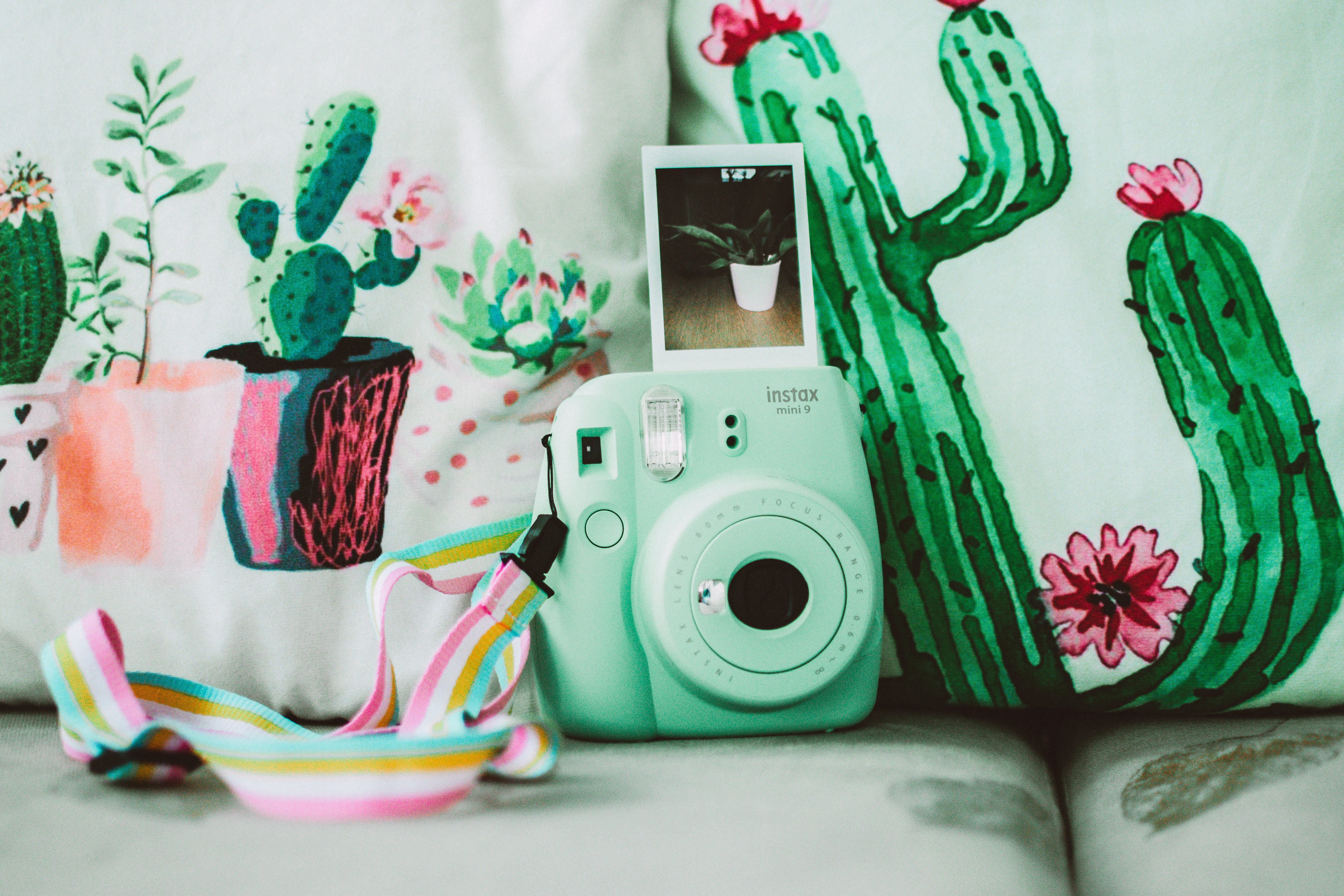 Green Instax Mini 8 Instant Camera Near Cactus Plant Printed Textiles