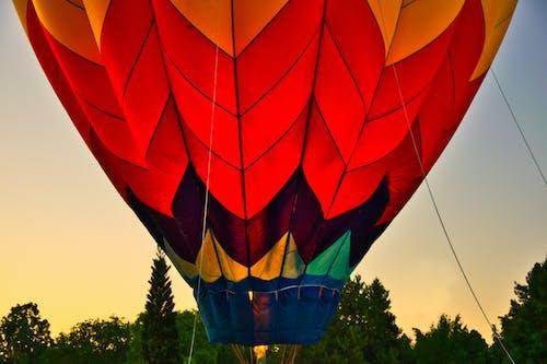 Darmowe zdjęcie z galerii z balon, balon na gorące powietrze, drzewa, jasny