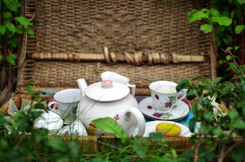 Free stock photo of picnic, tea