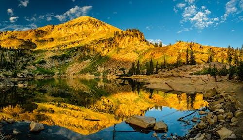Бесплатное стоковое фото с вода, восход, гора, деревья