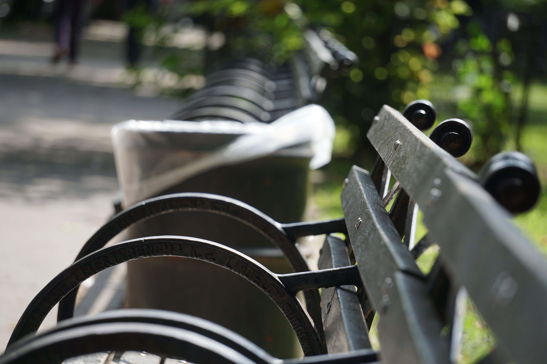 Free stock photo of a6300, bench, harlem, new york city
