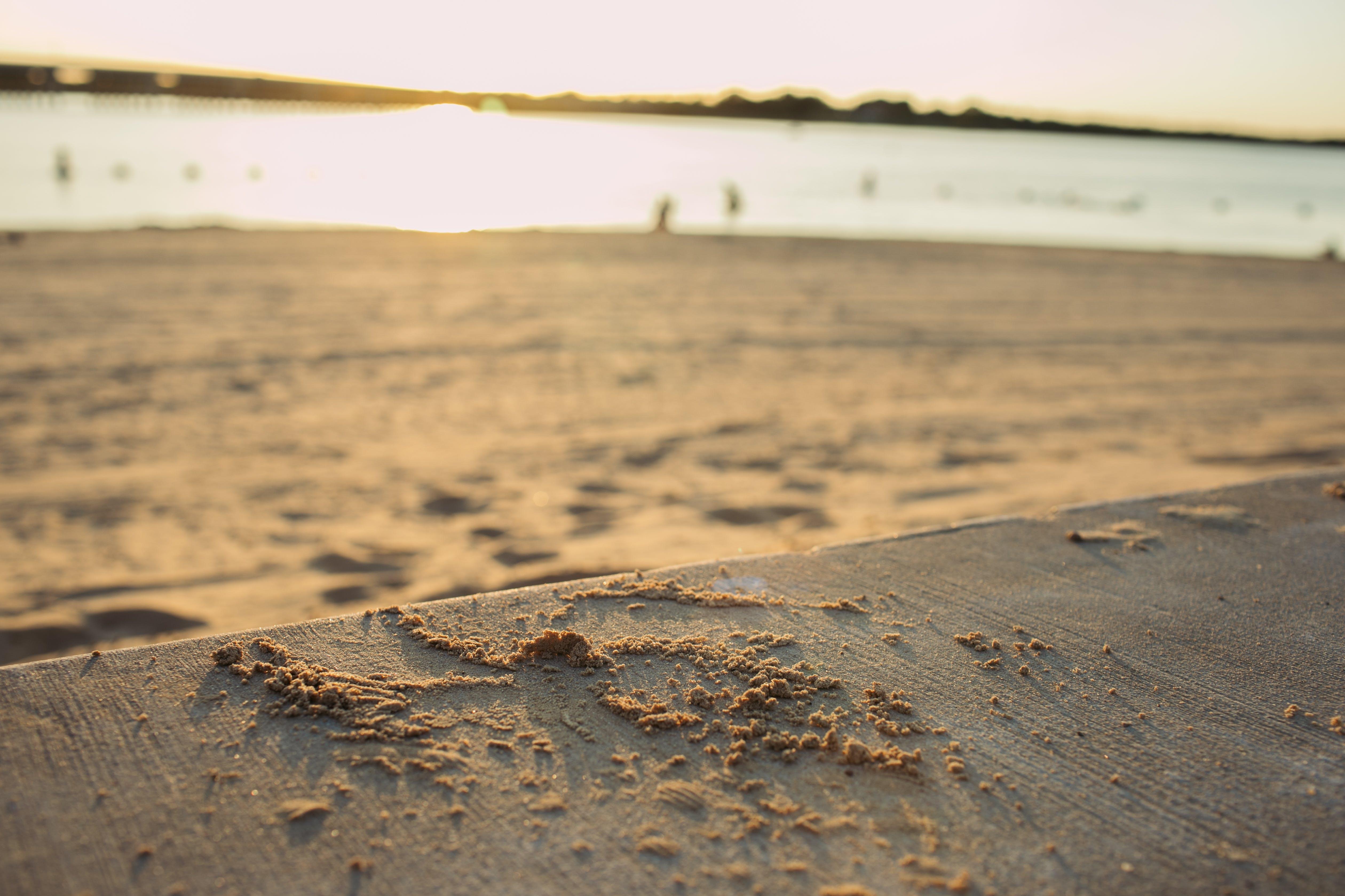 Free stock photo of beach, lake, sand