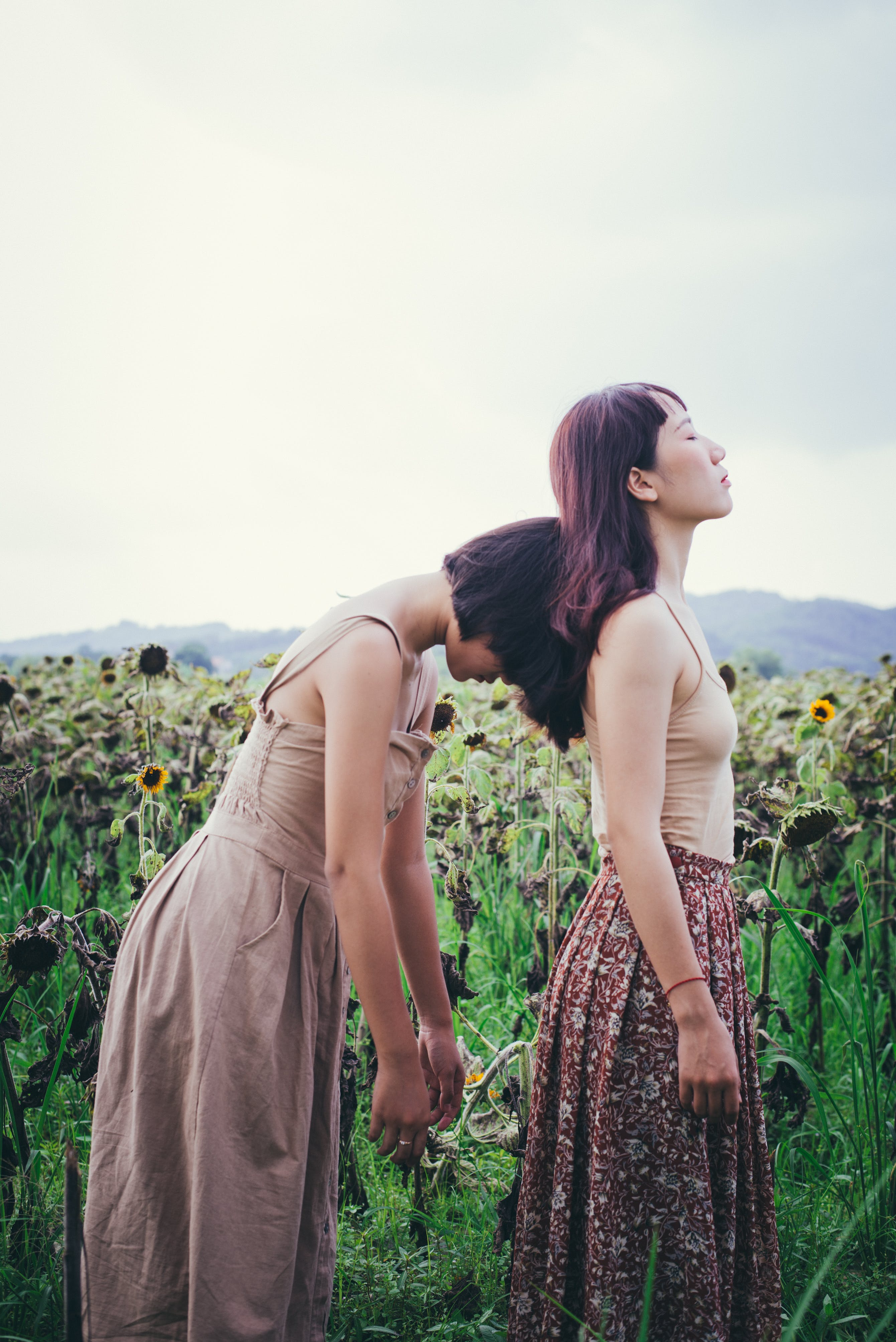 Two Woman Standing Near Sunflower Field at Cloudy Sky