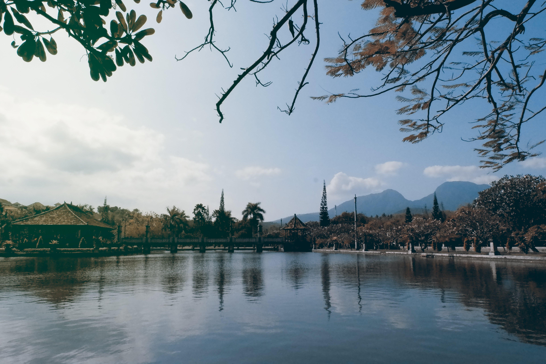 Free stock photo of bali, landscape