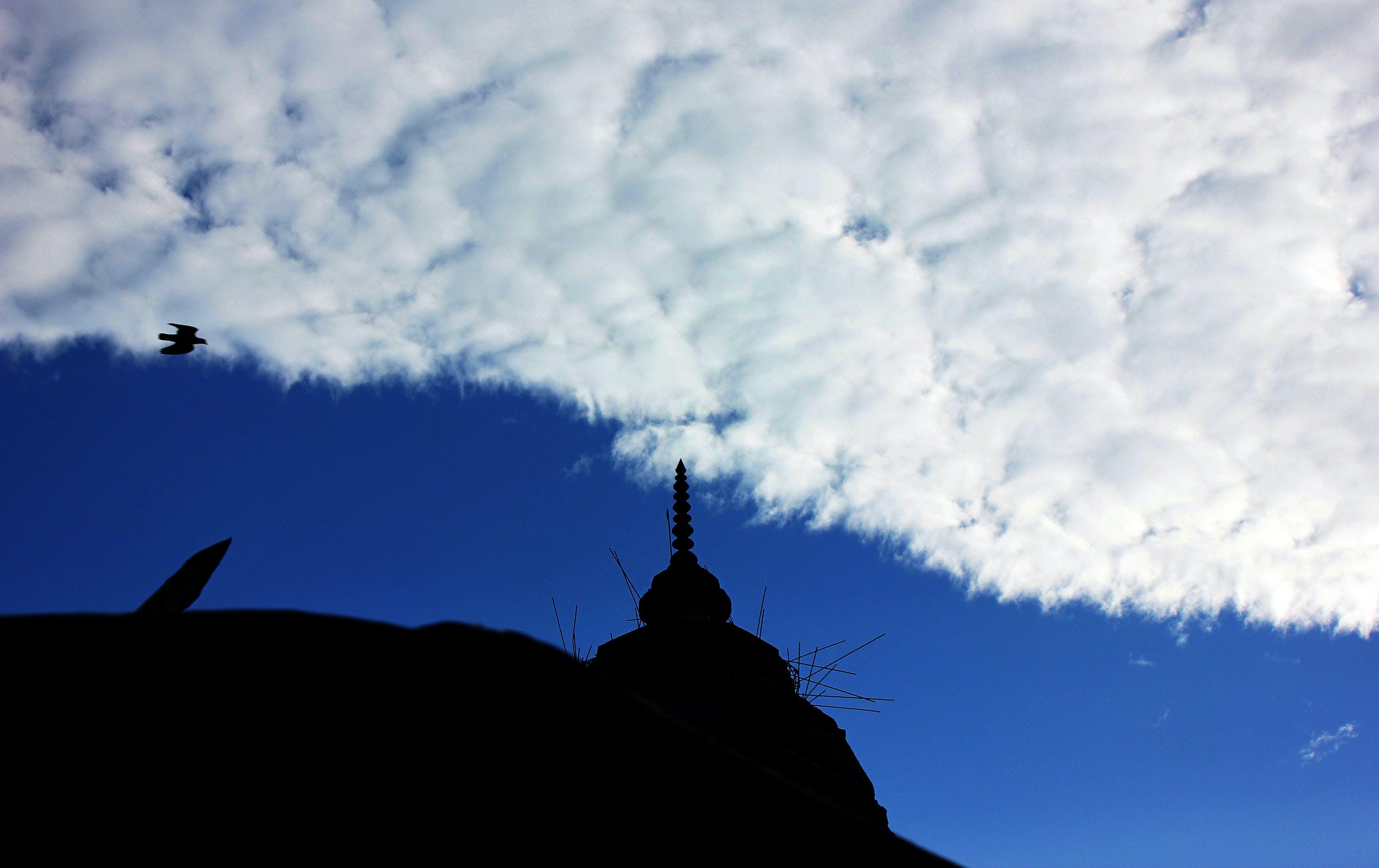 Free stock photo of bird, blue, cloud, india