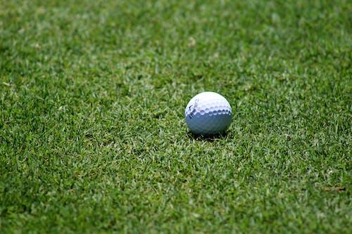 球, 球道, 草, 高爾夫 的 免費圖庫相片