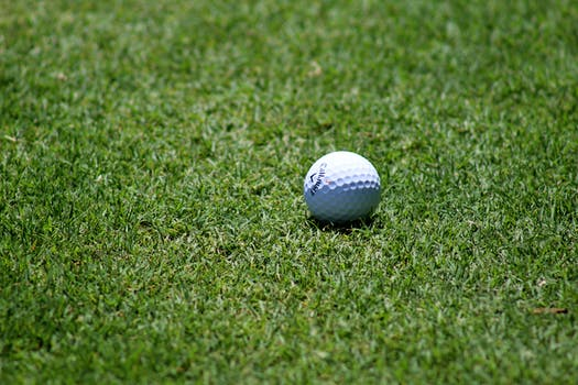 Free stock photo of grass, ball, golf, golf ball