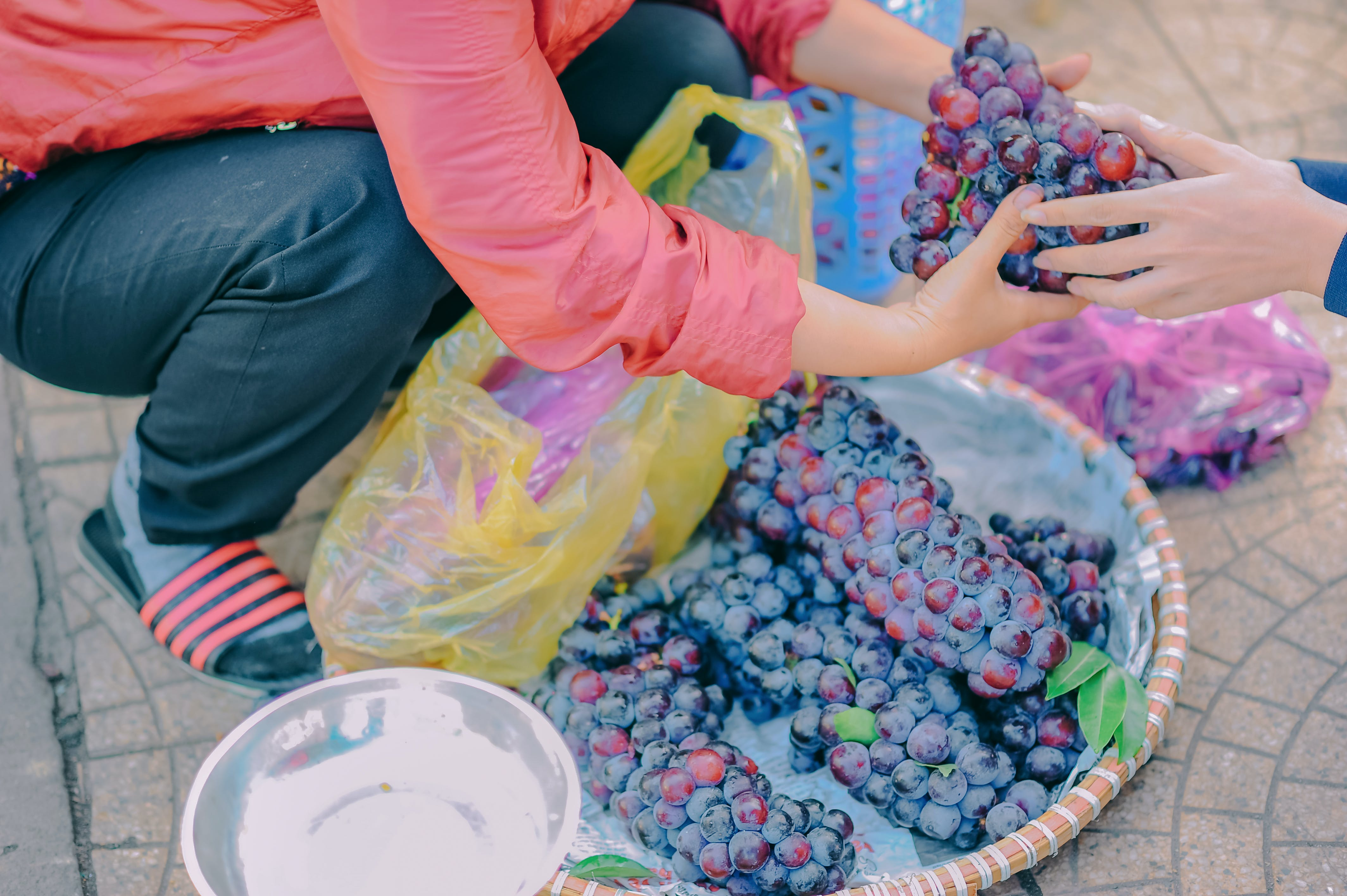 Person Holding Fruits